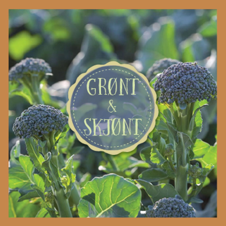 Brokkolini dyrkes på Gilhus Gård i Lier